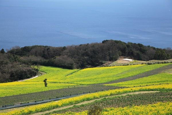 淡路島イメージ写真